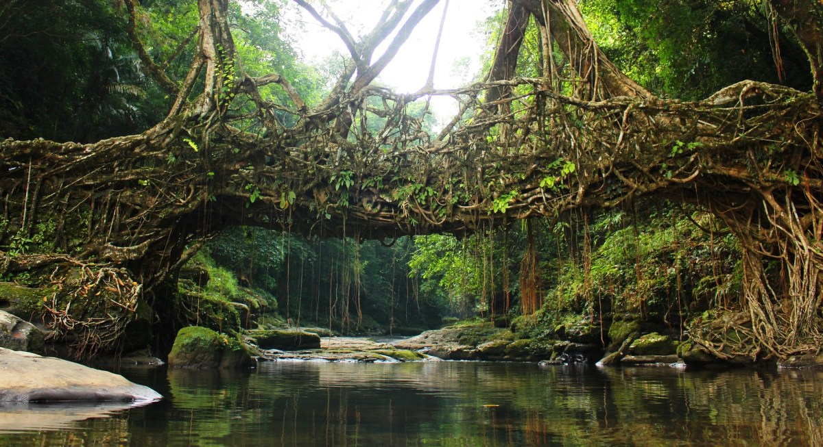 Discovering Meghalaya: A trip to the cleanest town in Asia
